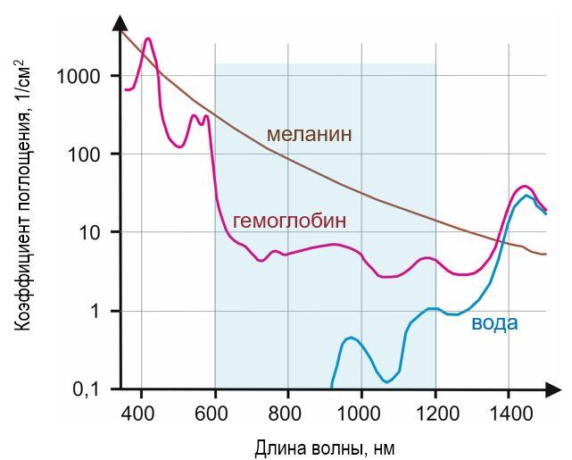 Спектр поглощения меланина, гемоглобина и воды