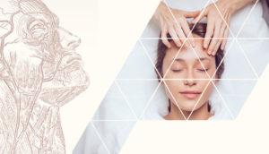 Диссекционный курс и Научно-практическая конференция для косметологов