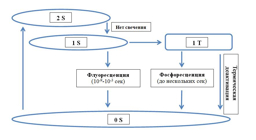 Флуоресцентная диагностика
