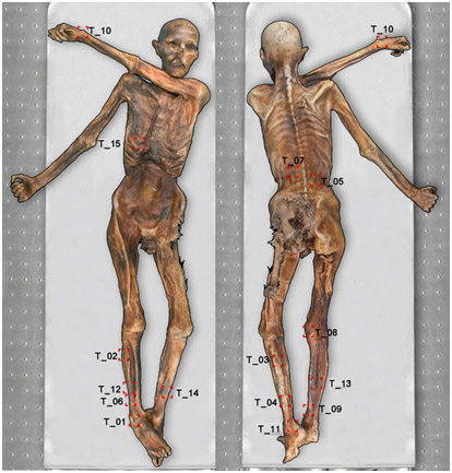 Бытовые татуировки на теле мумии