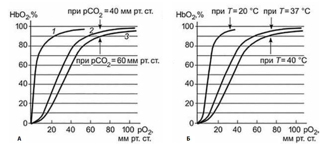 Кривые диссоциации оксигемоглобина